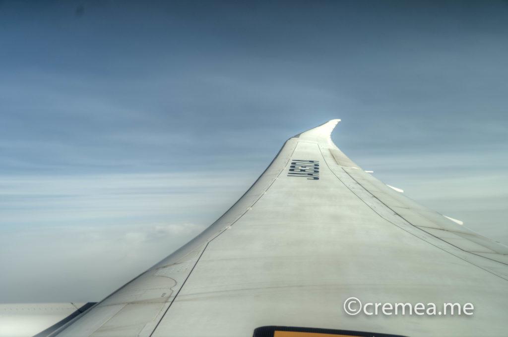 |SONY α7Ⅲで撮影窓から見える右翼(機体番号:JA830A ボーイング787-9)